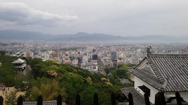 松山市街を眺める