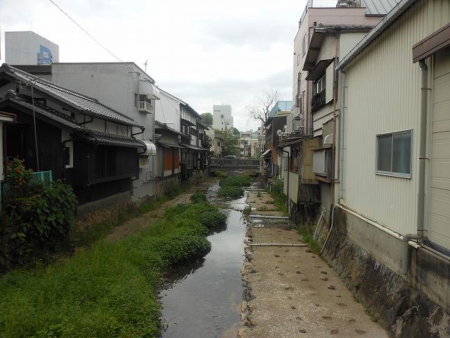 宇和島市内の美しい水路