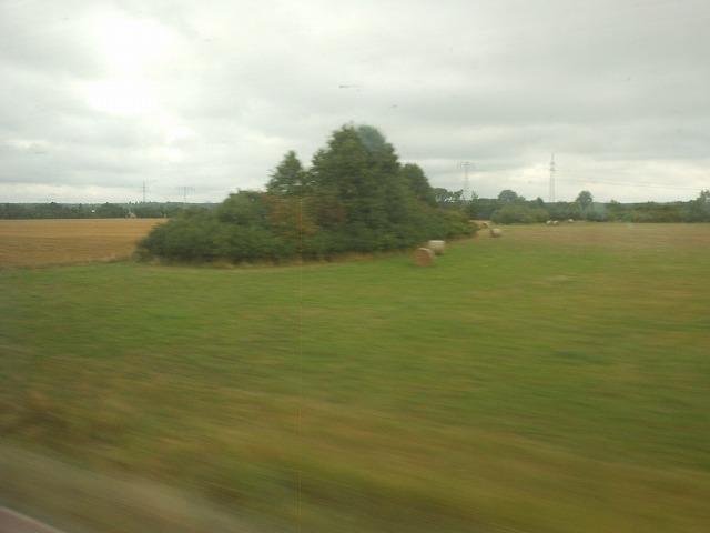 ベルリン近くの田園地帯