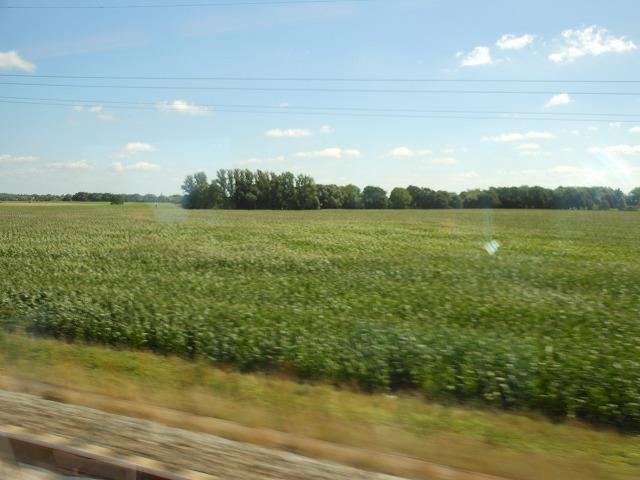 ベルリンを出て農村地帯を走る