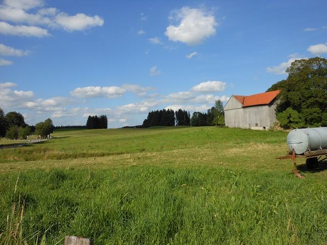 ヴィース教会付近の田園風景
