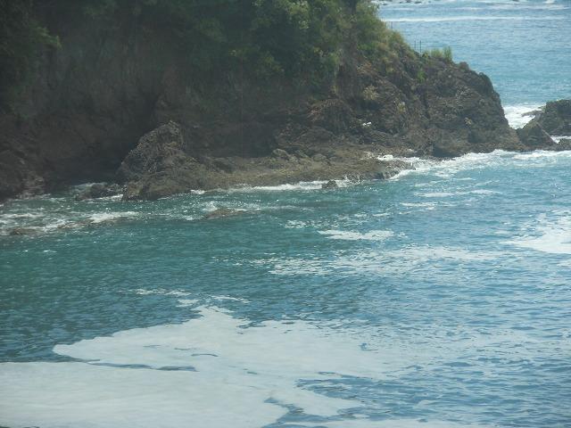 美しい太平洋