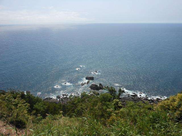 室戸岬から海を眺める