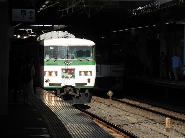 185系(2018.11.3品川)
