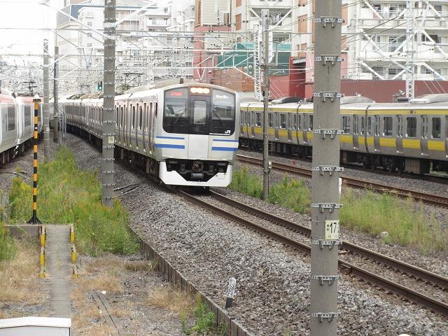 E217系(錦糸町)